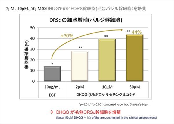 DHQGを増やすほど毛乳頭細胞を活性化